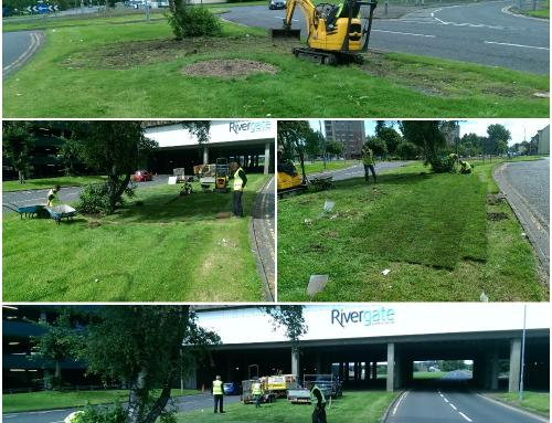 Landscaping and Tidy Up for North Ayrshire Council